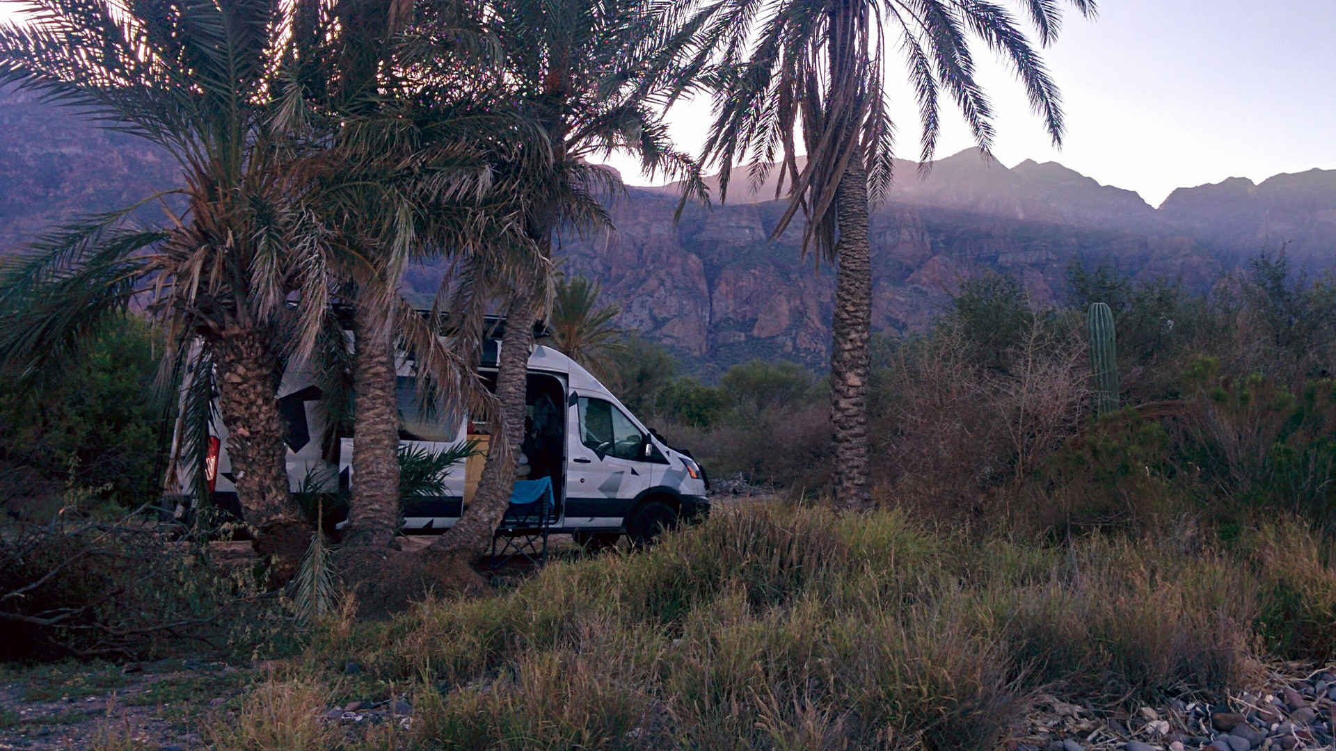 The van hidden by some palms, standing in a canyon